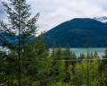 Lot 172-6500 In-Shuck-ch Forest Road image 3