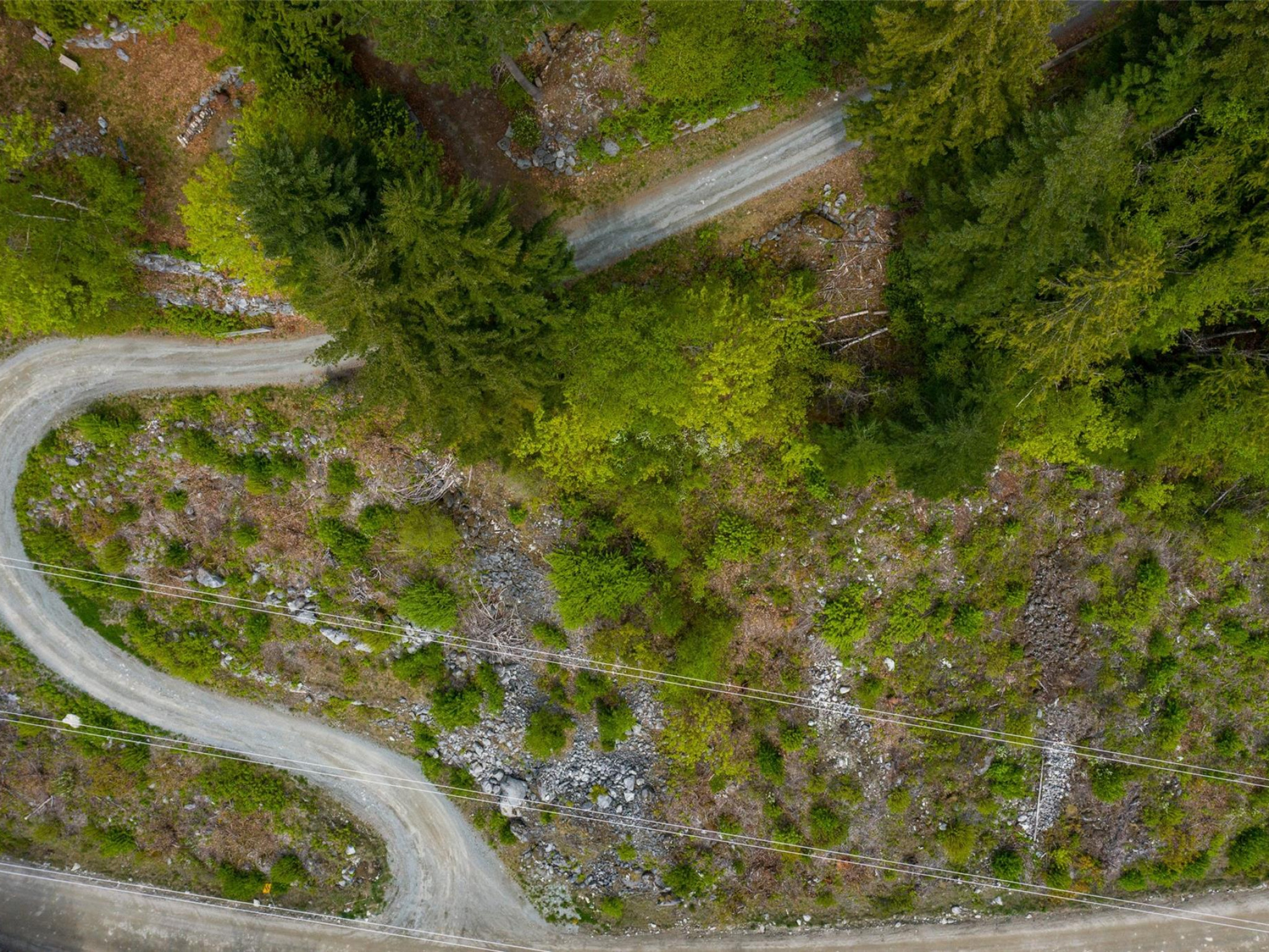 Lot 172-6500 In-Shuck-ch Forest Road image 7